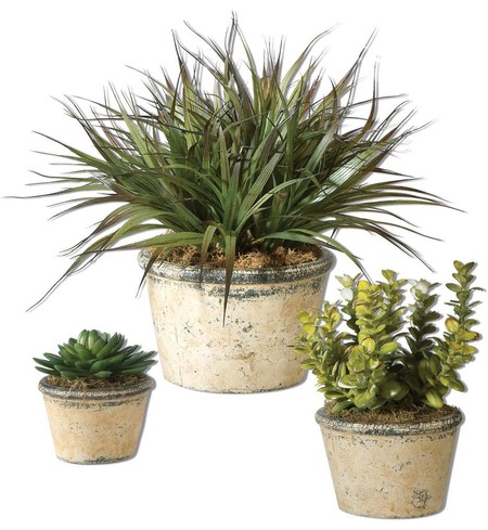 La Costa Greenery (Set of 3)