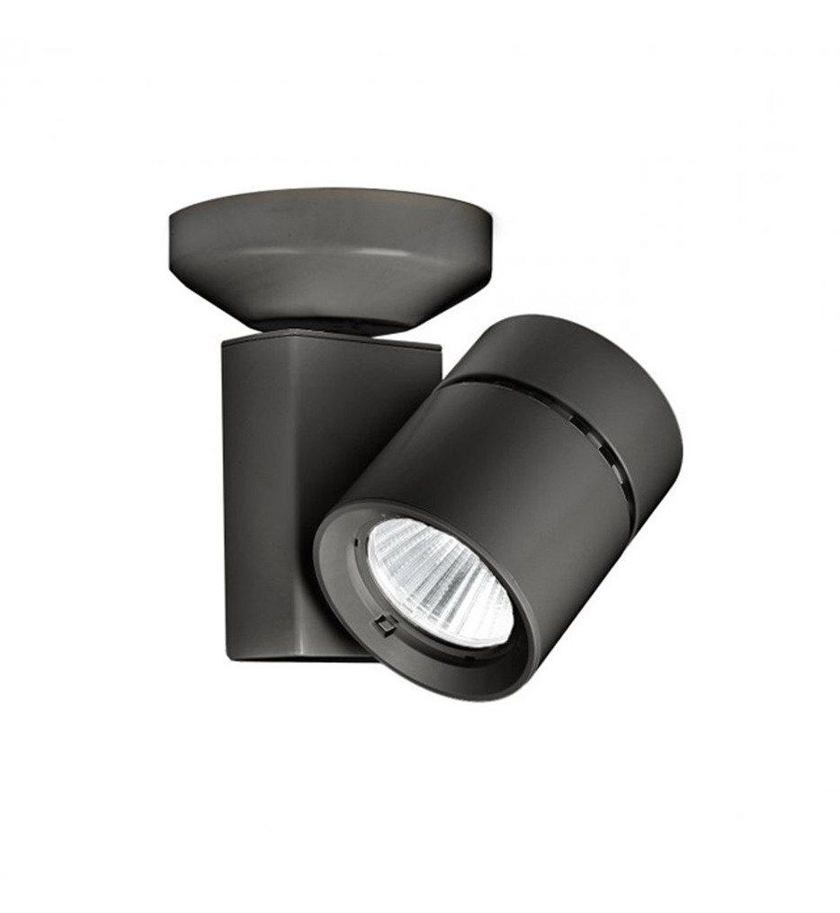 WAC Lighting - Exterminator II 23 Watt Ceiling Monopoint