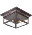 Troy Lighting - CCD9000OBZ - Newton Old Bronze 2 Light Outdoor Flush Mount