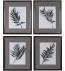 Uttermost - 33687 - Uttermost Eucalyptus Leaves Framed Prints (Set of 4)
