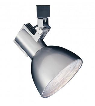 WAC Lighting - Radiant PAR38 Line Voltage Track Head