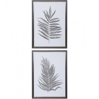 Silver Ferns Framed Prints (Set of 2)