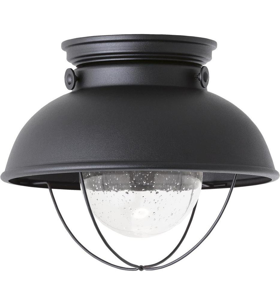Sea Gull Lighting - 886993S-12 - Sebring Black 1 Light Outdoor Flush Mount