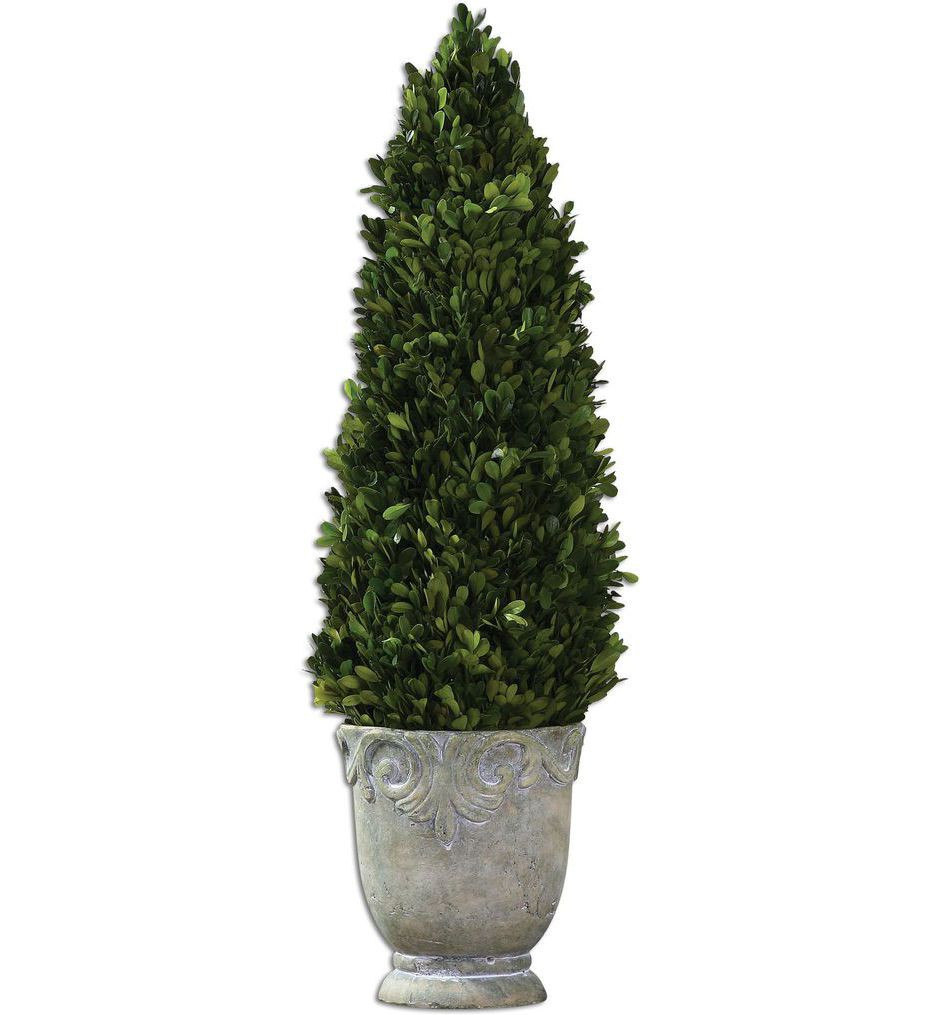 Uttermost - 60111 - Preserved Boxwood Cone Topiary
