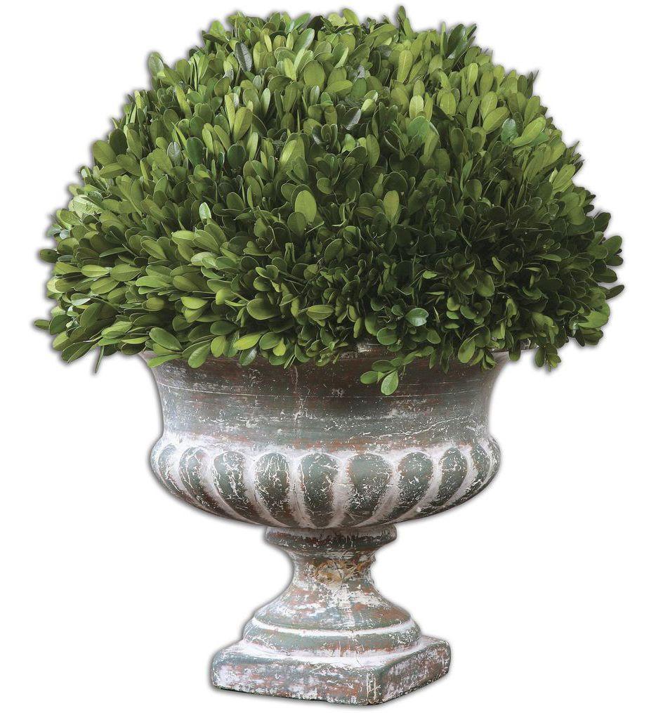 Uttermost - 60113 - Preserved Boxwood Garden Urn