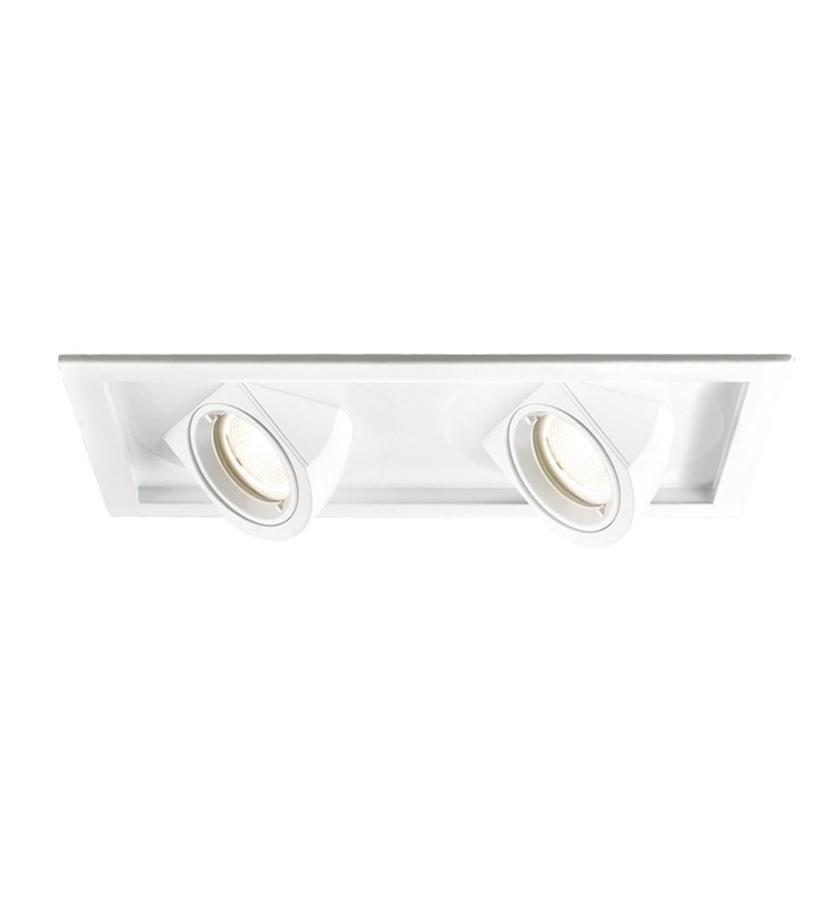 WAC Lighting - MT-5LD225H-NA - Housing For 2 Light Tesla LED Multiple Spot